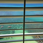 plantation shutters hawaii (5)